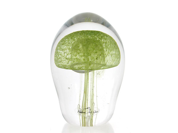 Jellyfishlime11cm$180_